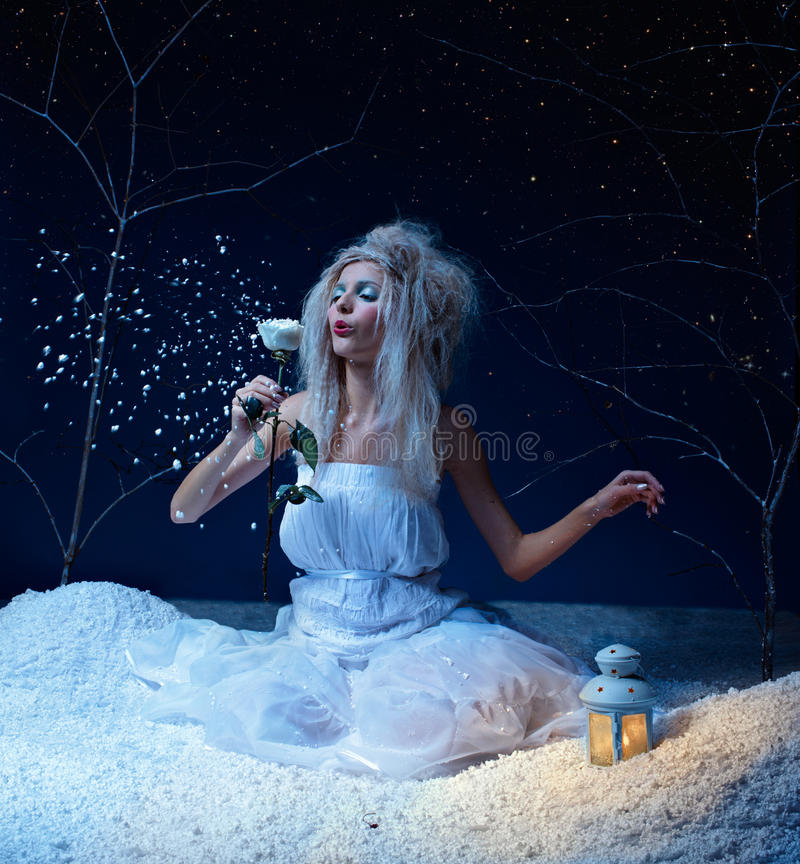 O fairy congelado com levantou-se fotos de stock