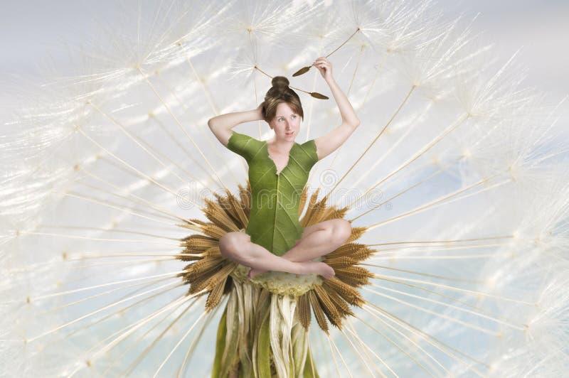 O fairy da flor imagens de stock