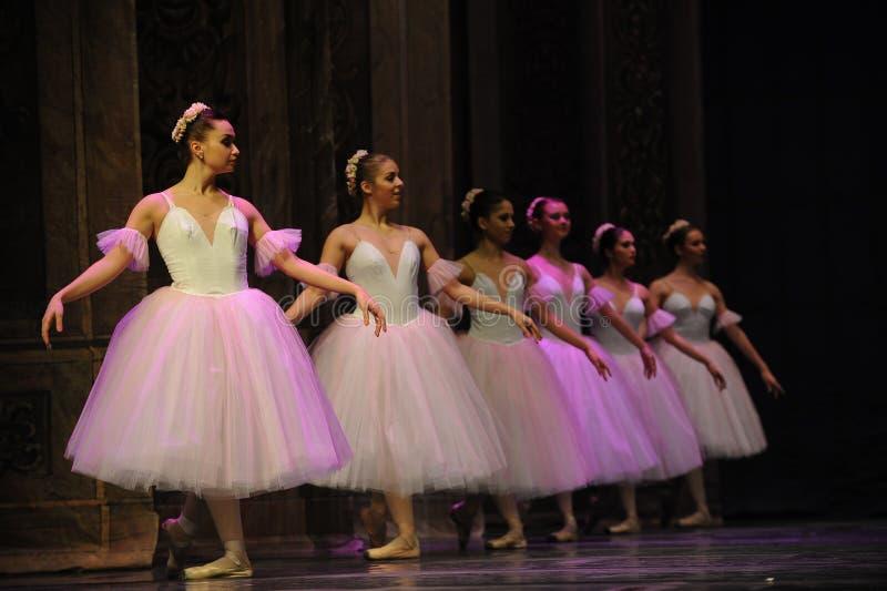 O fairy- do floco de neve - a quebra-nozes do bailado imagens de stock royalty free