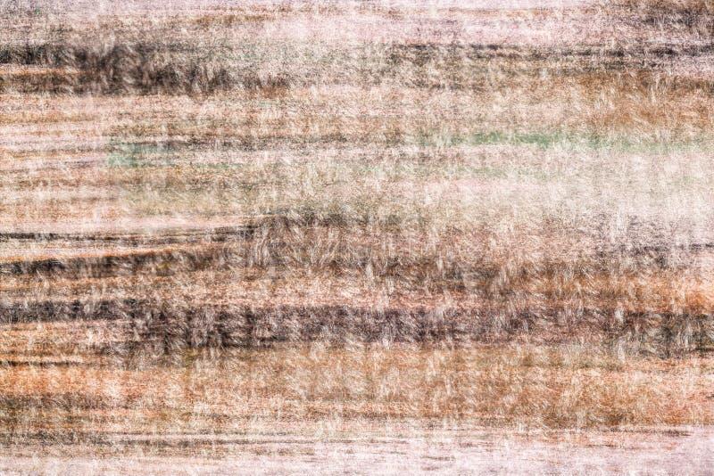 O falso texture pintado pela pintura foto de stock