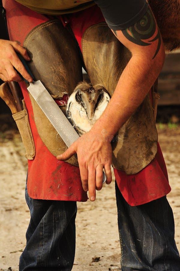 O Farrier, rasping o casco foto de stock