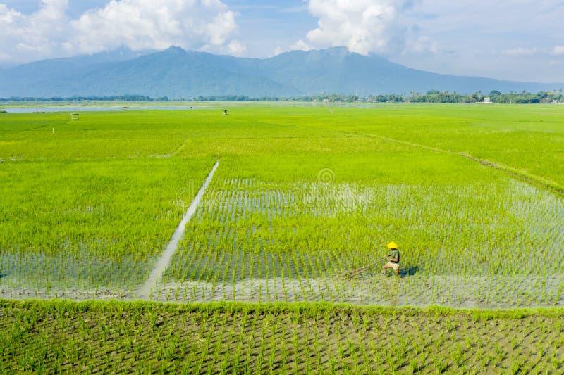 O fazendeiro ara a terra com uma ferramenta tradicional imagem de stock royalty free
