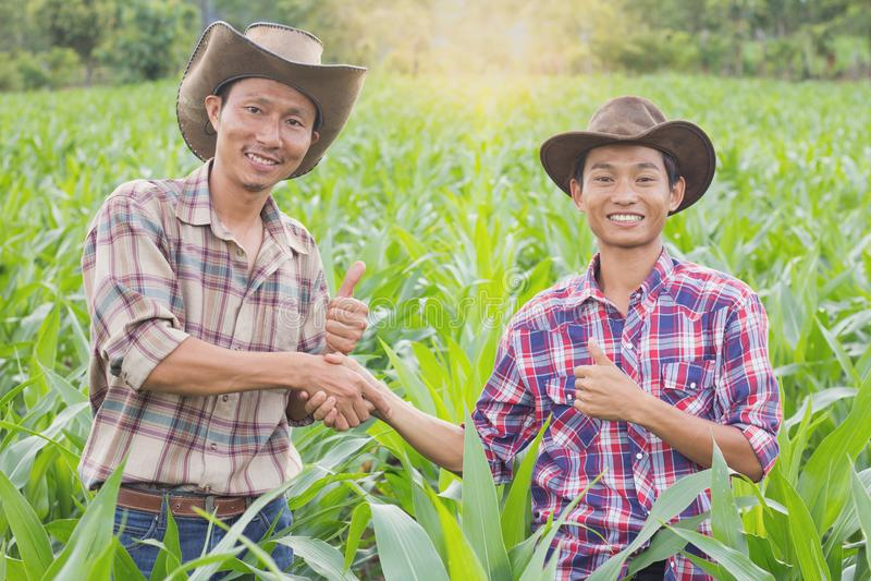 O fazendeiro dois que está e que agita as mãos no milho cultiva, o conceito o fotos de stock