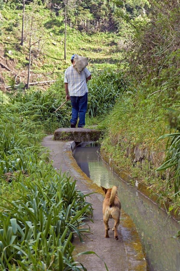 O fazendeiro local anda ao longo de um canal da irrigação imagens de stock royalty free