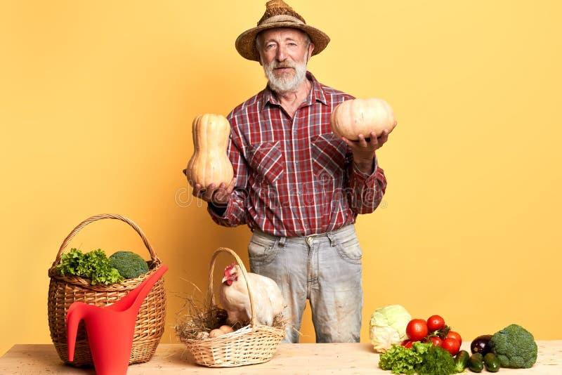 O fazendeiro mostra os resultados do trabalho duro no campo orgânico, prouds do seu mais havest rico imagem de stock royalty free