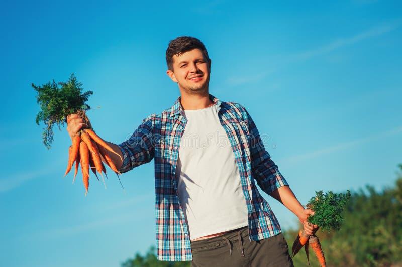 O fazendeiro novo Man que fica e que guarda o grupo colheu a cenoura fresca no jardim no fundo do céu azul Bio vegetais orgânicos fotografia de stock royalty free