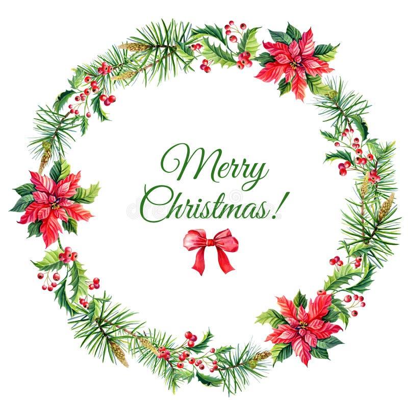 O Feliz Natal da aquarela envolve-se com as flores vermelhas da poinsétia, azevinho ilustração do vetor