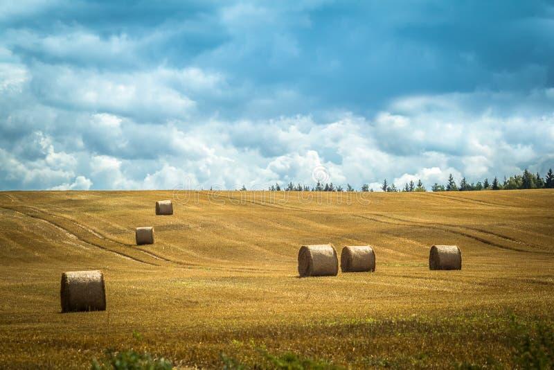 O feno rola em um campo segado em uma vila no verão imagem de stock