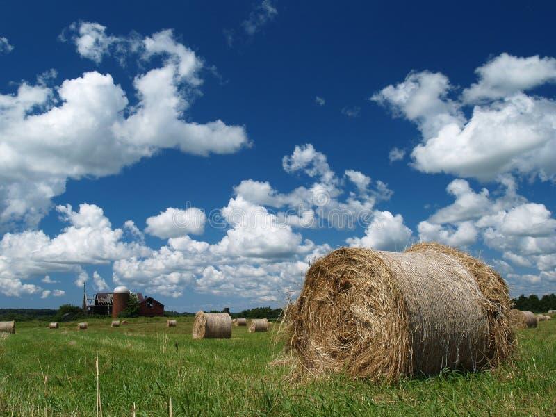 O feno rola o dia de verão do ona imagem de stock