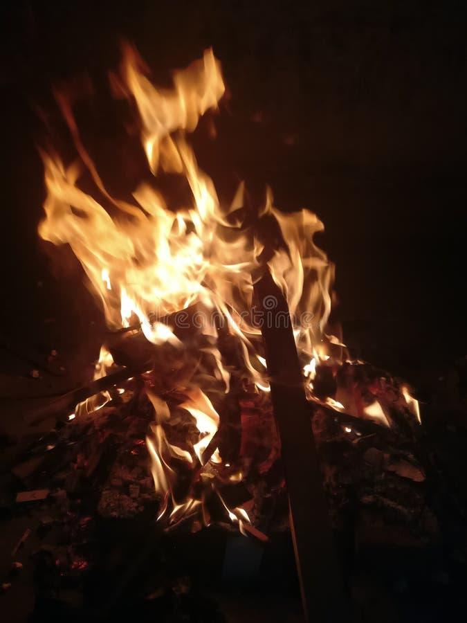 O festival indiano Lohri comemorou pela fogueira de madeira do relâmpago foto de stock royalty free