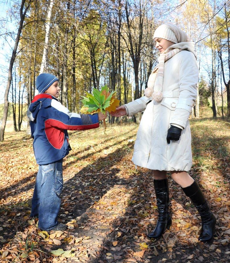 O filho apresenta o ramalhete amarelo do outono ao miliampère fotografia de stock royalty free