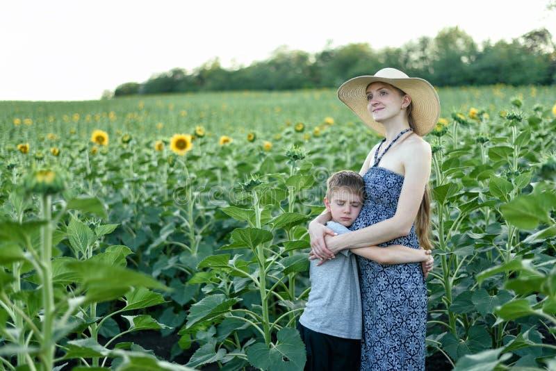 O filho pequeno triste abraça a posição grávida da mãe em um campo de girassóis de florescência imagem de stock