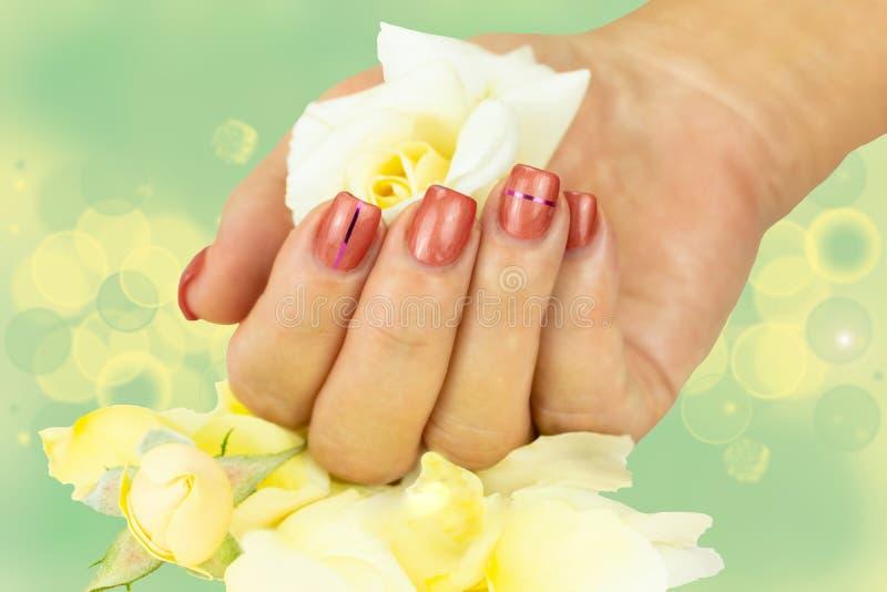 O fim da mão fêmea com os pregos cor-de-rosa manicured mantém no h foto de stock royalty free