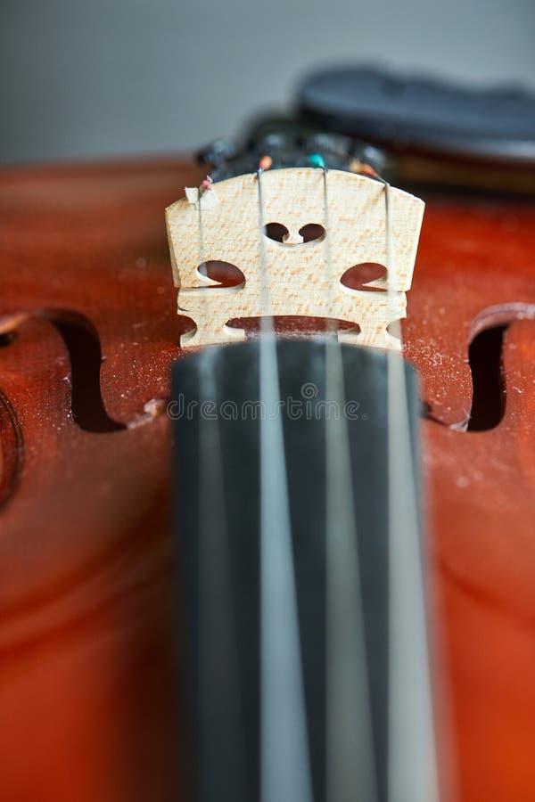 O fim disparou acima de um violino, def muito macio do campo imagens de stock royalty free