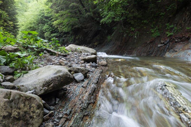 O fluxo rápido da madeira da água do rio Grandes rochas na costa foto de stock royalty free