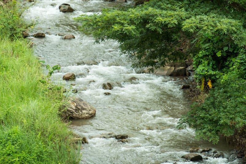 O fluxo rápido e poderoso da água no rio imagem de stock royalty free