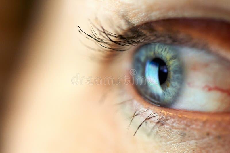 O foco seletivo do close-up macro dos olhos da mulher imagens de stock