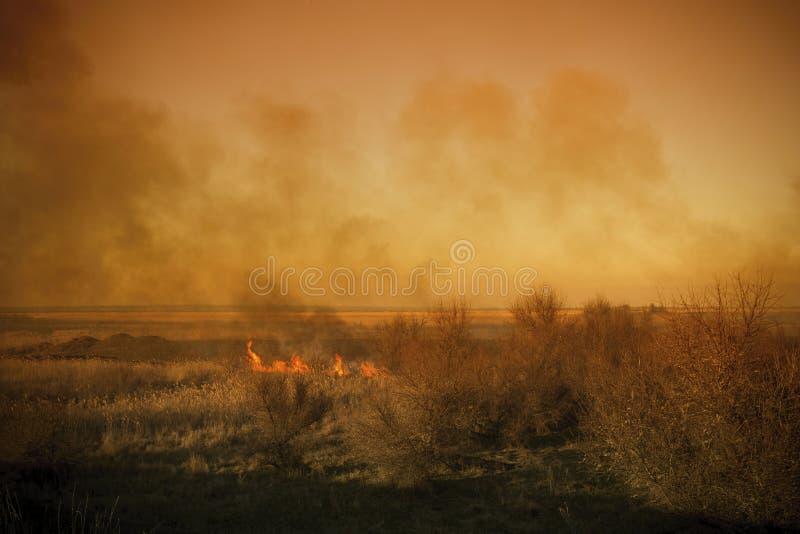 O fogo forte da pradaria com as grandes nuvens do fumo de bloqueio entrou em erupção no estepe do sul imagens de stock royalty free