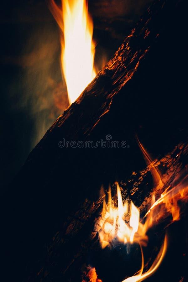 O fogo na floresta, fogueira foto de stock