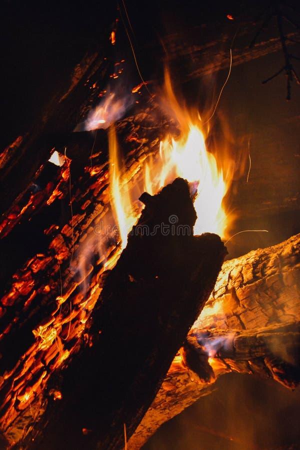 O fogo na floresta, fogueira imagens de stock