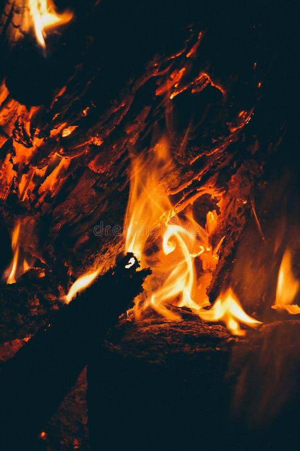 O fogo na floresta, fogueira imagem de stock royalty free
