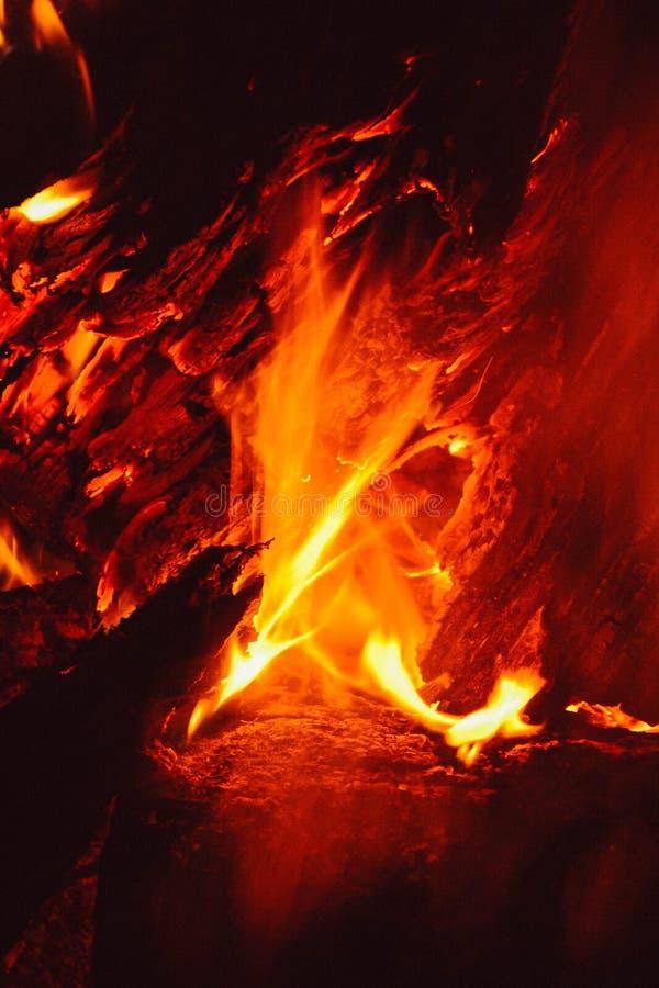 O fogo na floresta, fogueira imagem de stock