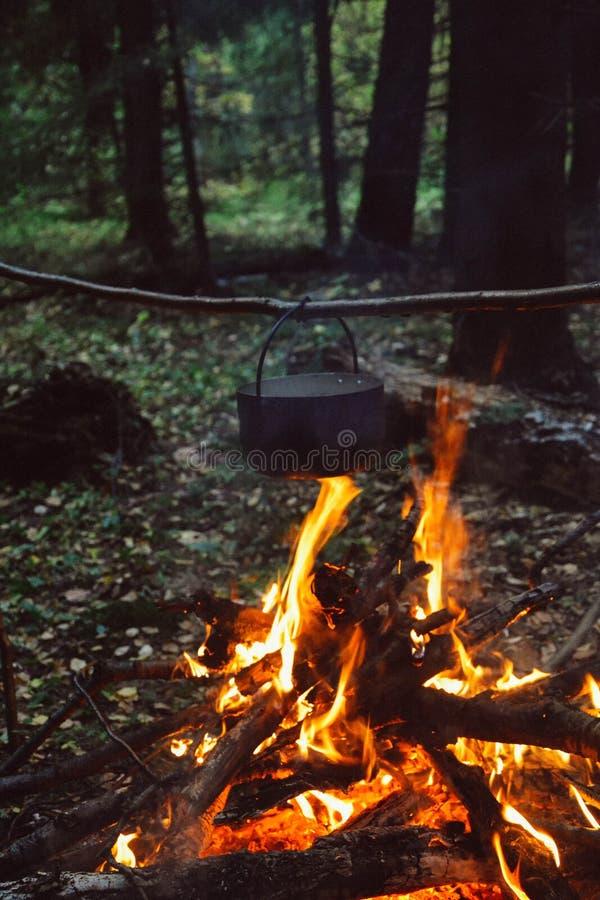 O fogo na floresta, fogueira, cozinhando o alimento do acampamento fotos de stock