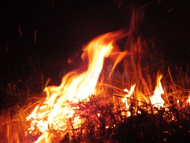 O fogo que aumentou no súbito da terra da noite para trás em um fundo preto natural fotografia de stock royalty free