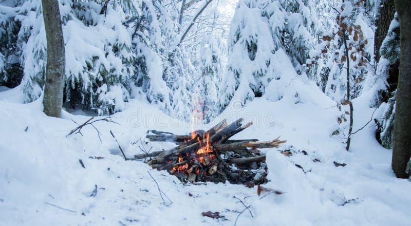 O fogo queima-se na neve nas madeiras, em um fundo de abetos cobertos de neve imagens de stock