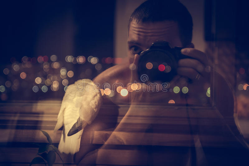 O fotógrafo que toma a fotografia da inspiração do pássaro com cidade da noite ilumina-se no fundo fotografia de stock