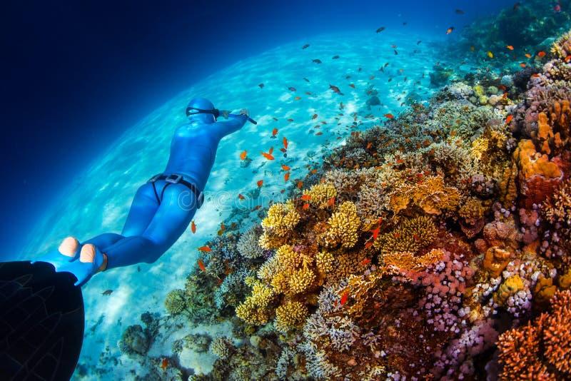 O freediver da mulher desliza sobre o recife de corais vívido fotografia de stock royalty free