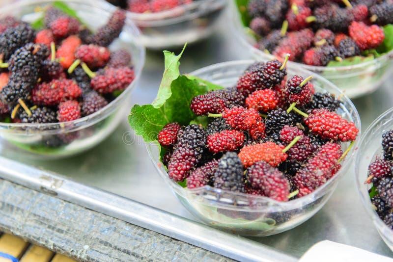O fruto da amoreira no sopro imagem de stock royalty free