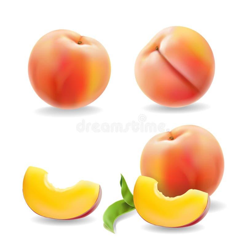 O fruto maduro do pêssego com folha isolou a ilustração realística do vetor ilustração stock