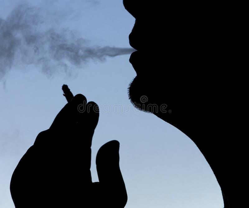 O Fumador Imagens de Stock Royalty Free