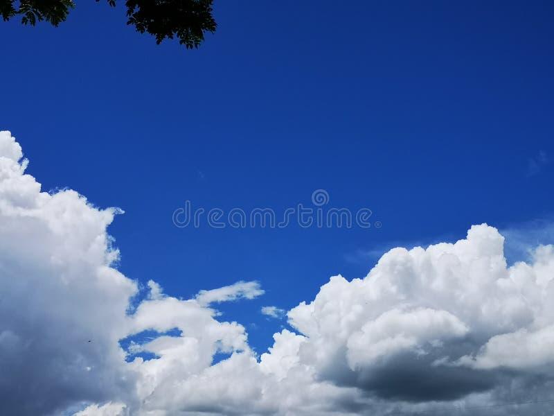 O fundo abstrato bluesky e das nuvens da natureza com ramos de árvore imagem de stock