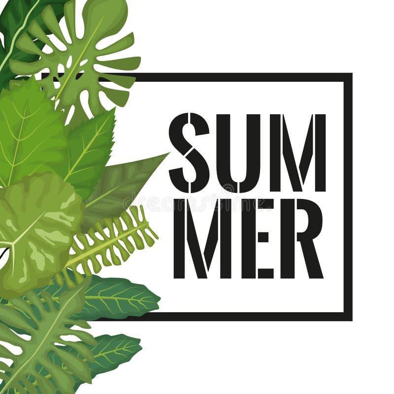 O fundo branco com as folhas decorativas do verde da beira esquerda lateral e o quadro retangular com verão text ilustração stock