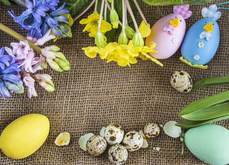 O fundo com ovos de codorniz, mola da Páscoa ou da mola floresce foto de stock royalty free