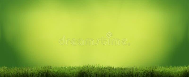 O fundo 3D da grama verde rende ilustração royalty free