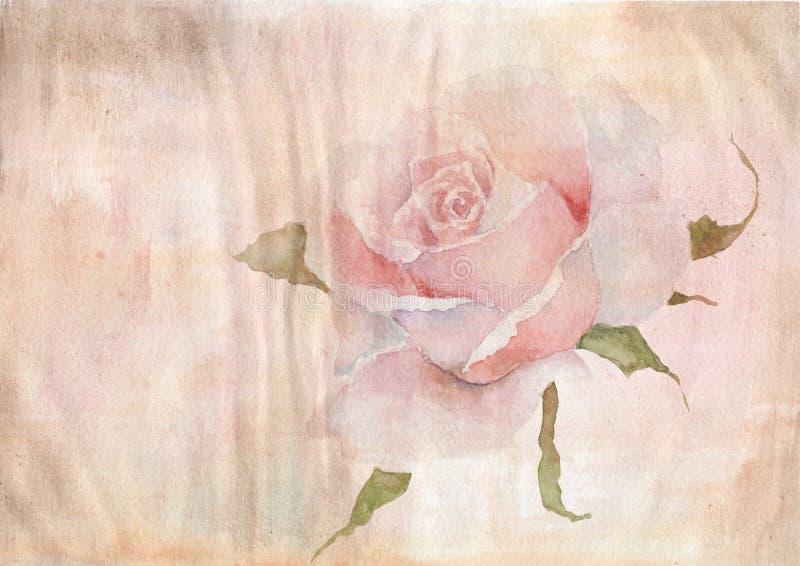 O fundo da aquarela do papel envelhecido, aquarela aumentou ilustração do vetor