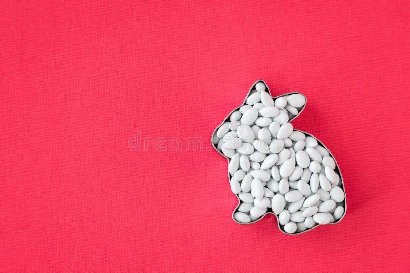 O fundo da Páscoa, cortador dado forma coelho da cookie do metal enchido com os doces brancos revestiu sementes de girassol fotos de stock royalty free
