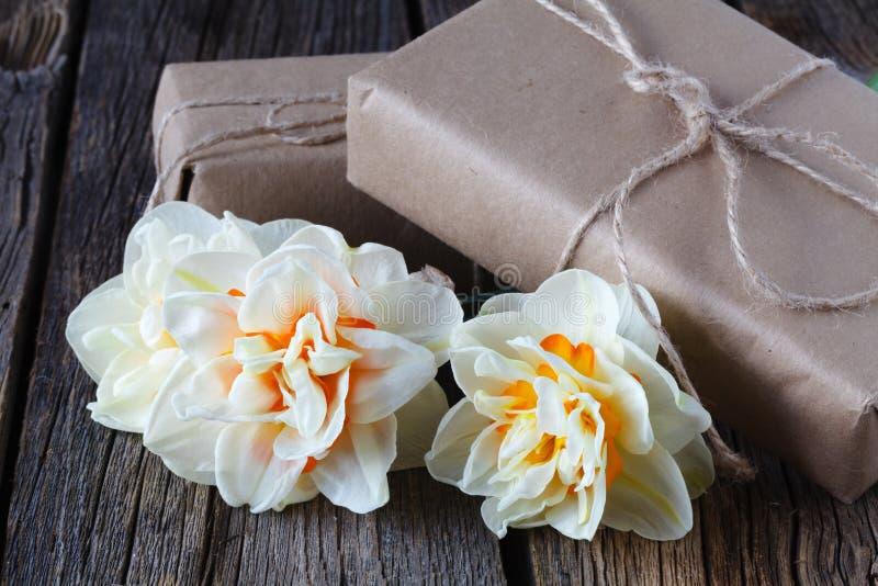 O fundo da Páscoa da mola com as flores brancas frescas do narciso dos narcisos amarelos fecha-se acima imagem de stock