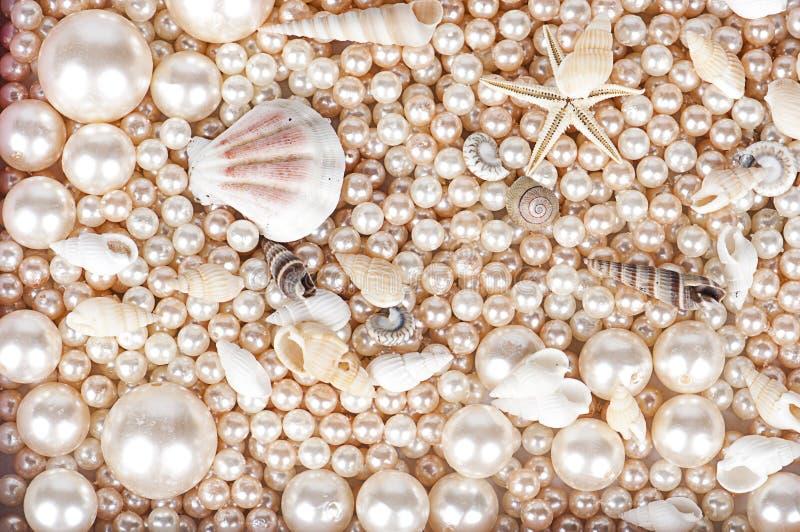O fundo das pérolas e dos shell do marsih foto de stock royalty free