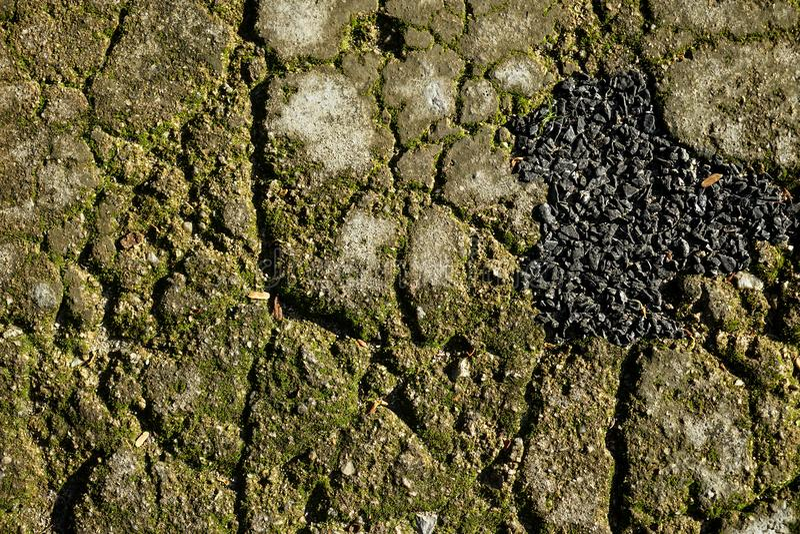 O fundo de superfície rachado da textura da estrada cinzenta do cimento, da areia e do pavimento da pedra moída com líquene verde fotos de stock royalty free