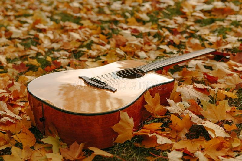 O fundo do outono com amarelo sae no parque e com uma guitarra fotografia de stock