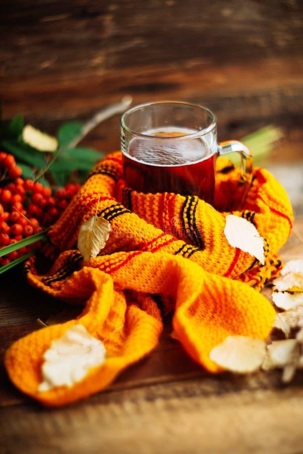 O fundo do outono com um copo do chá com folhas do amarelo e aquece o lenço feito malha nas placas idosas no fundo da janela com  fotografia de stock