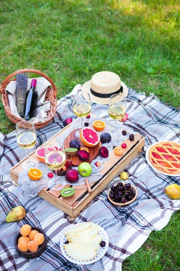 O fundo do piquenique com vinho branco e verão frutifica no gra verde fotos de stock royalty free
