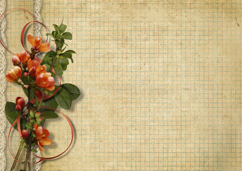 O fundo do vintage com mola floresce em quadriculado de papel ilustração royalty free