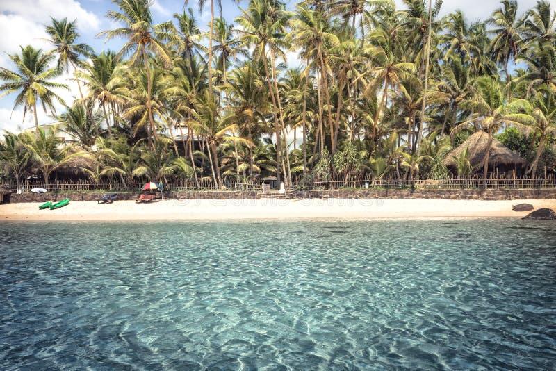 O fundo do vintage das férias de verão da água de turquesa das palmeiras do litoral da ilha da praia com palmeiras surfa o mar co foto de stock royalty free