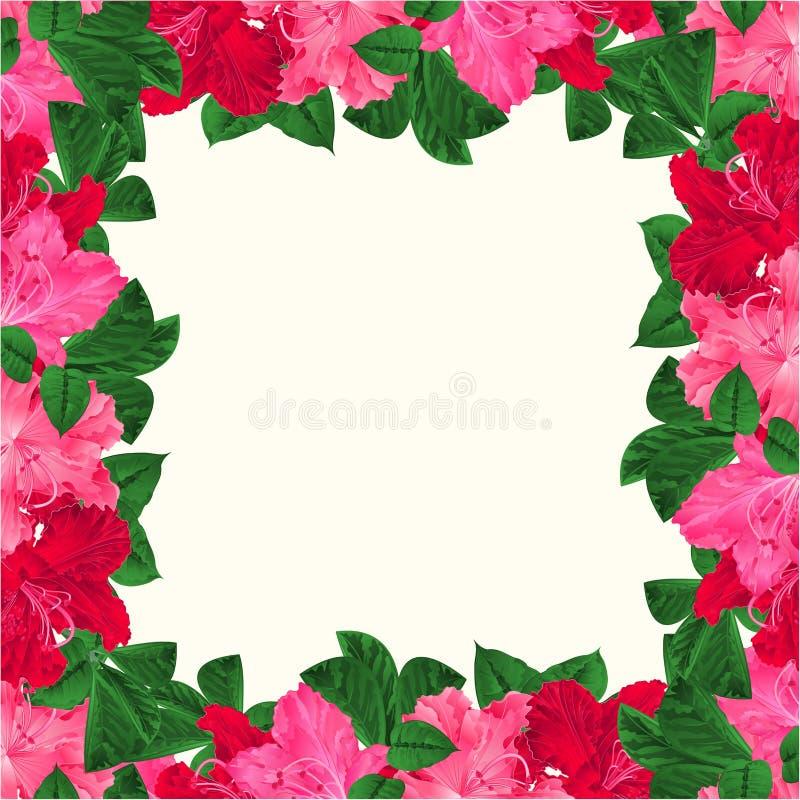 O fundo festivo do quadro floral com os ramos de florescência cor-de-rosa e o vermelho floresce rododendros o cartão da ilustraçã ilustração stock