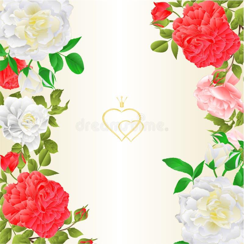 O fundo festivo vertical da beira floral com vintage de florescência das rosas e dos botões vector a ilustração para o uso no des ilustração do vetor